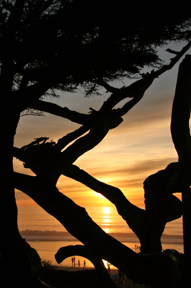 Carmel's famously spectacular sunsets draw huge crowds every evening to the town's beach.