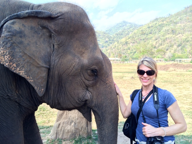 volunteering at the Elephant Nature Park in Chiang Mai Thailand