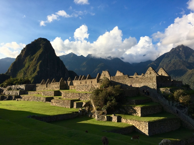 Machu Picchu - as amazing and beautiful as everyone says it is.