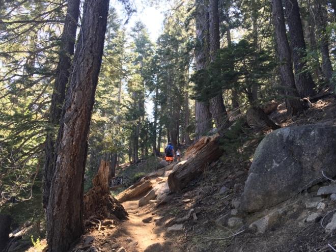 Angora Lakes Clark Trail
