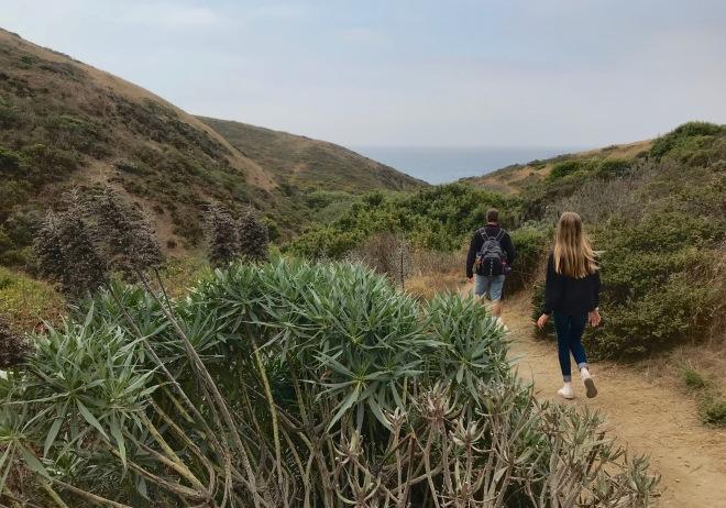 Pinnacle Gulch Trail