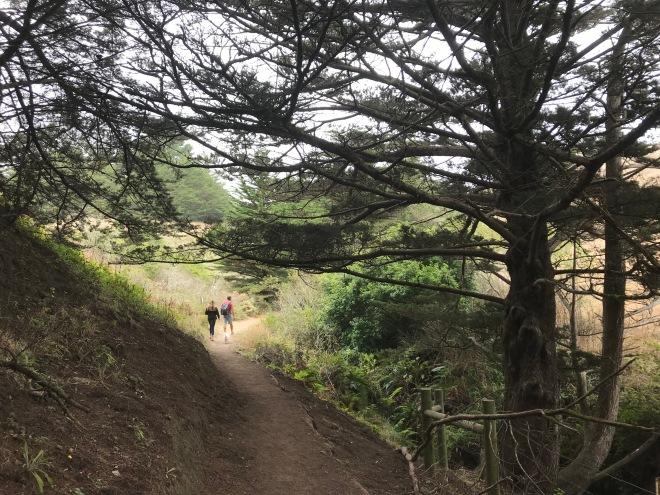 Shorttail Gulch Trail