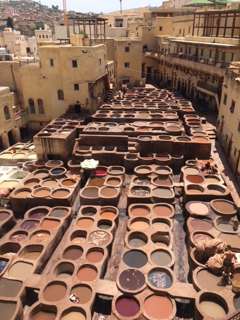 Fes tannery