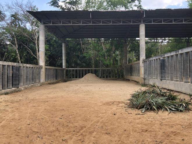 Elephant shelter